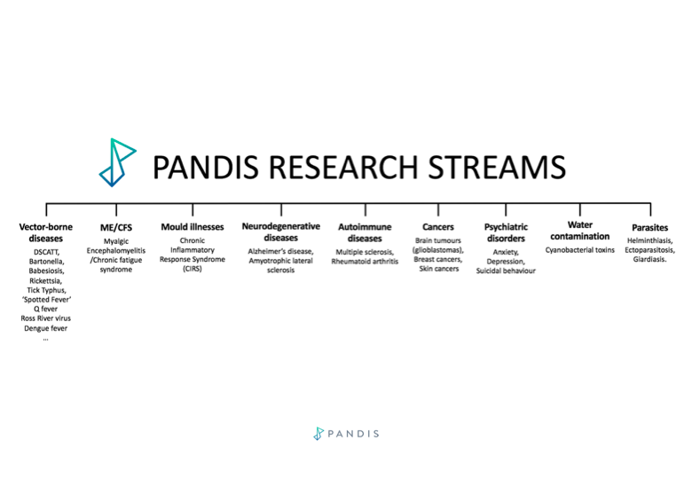 PANDIS Research Streams Image